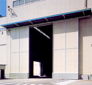 Heavy Automatic Door DSN-500
